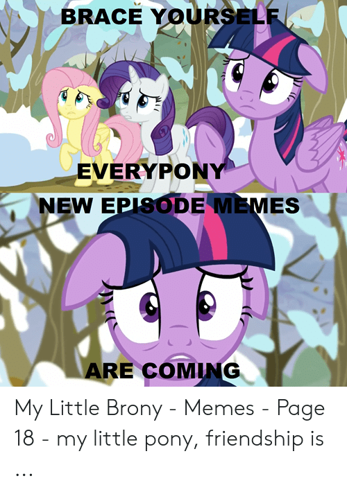 Little Brony: BRACE YOURSELF  EVERYPONY  NEW EPISODE MEMES  ARE COMING My Little Brony - Memes - Page 18 - my little pony, friendship is ...