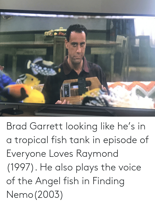 Finding Nemo: Brad Garrett looking like he's in a tropical fish tank in episode of Everyone Loves Raymond (1997). He also plays the voice of the Angel fish in Finding Nemo(2003)