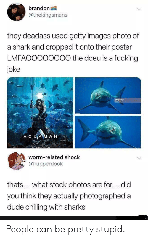 Dude, Fucking, and Shark: brandon  @thekingsmans  they deadass used getty images photo of  a shark and cropped it onto their poster  LMFAOO000000 the dceu is a fucking  joke  gettyinsages  A Q UAM AN  worm-related shock  @hupperdook  thats.... what stock photos  are for.... did  you think they actually photographe  dude chilling with sharks People can be pretty stupid.