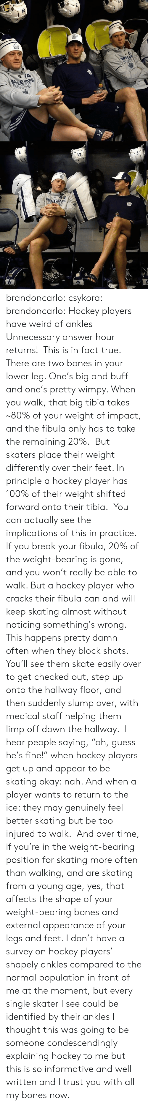 """I Trust You: brandoncarlo:  csykora:   brandoncarlo: Hockey players have weird af ankles Unnecessary answer hour returns! This is in fact true. There are two bones in your lower leg. One's big and buff and one's pretty wimpy. When you walk, that big tibia takes ~80% of your weight of impact, and the fibula only has to take the remaining 20%. But skaters place their weight differently over their feet. In principle a hockey player has 100% of their weight shifted forward onto their tibia. You can actually see the implications of this in practice. If youbreak your fibula, 20% of the weight-bearing is gone, and you won't really be able to walk. But a hockey player who cracks their fibula can and will keep skating almost without noticing something's wrong. This happens pretty damn often when they block shots. You'll see them skate easily over to get checked out, step up onto the hallway floor, and then suddenly slump over, with medical staff helping them limp off down the hallway. I hear people saying,""""oh, guess he's fine!"""" when hockey players get up and appear to be skating okay: nah. And when a player wants to return to the ice: they may genuinely feel better skating but be too injured to walk. And over time, if you're in the weight-bearing position for skating more often than walking, and are skating from a young age, yes, that affects the shape of your weight-bearing bones and external appearance of your legs and feet. I don't have a survey on hockey players' shapely ankles compared to the normal population in front of me at the moment, but every single skater I see could be identified by their ankles   I thought this was going to be someone condescendingly explaining hockey to me but this is so informative and well written and I trust you with all my bones now."""