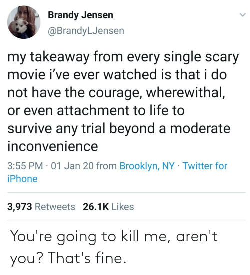 iphone 3: Brandy Jensen  @BrandyLJensen  my takeaway from every single scary  movie i've ever watched is that i do  not have the courage, wherewithal,  or even attachment to life to  survive any trial beyond a moderate  inconvenience  3:55 PM · 01 Jan 20 from Brooklyn, NY Twitter for  iPhone  3,973 Retweets 26.1K Likes You're going to kill me, aren't you? That's fine.