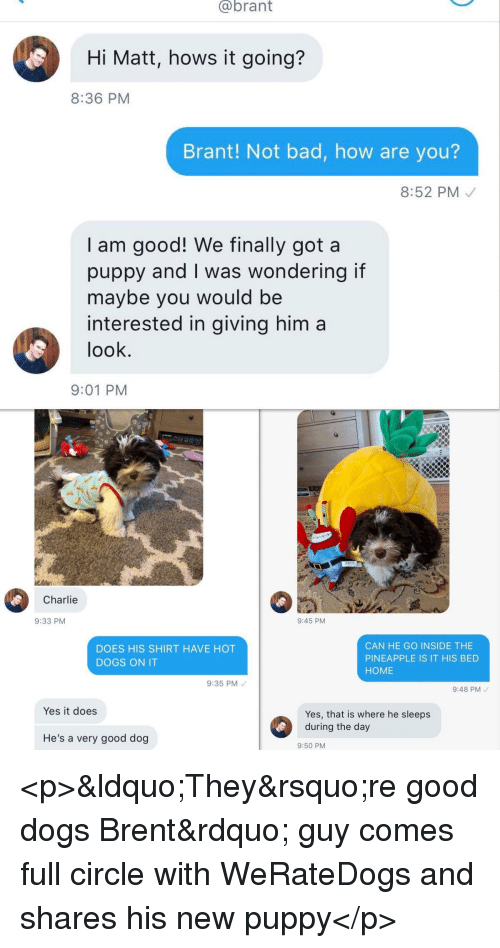 Bad, Charlie, and Dogs: @brant  Hi Matt, hows it going?  8:36 PM  Brant! Not bad, how are you?  8:52 PM  I am good! We finally got a  puppy and I was wondering if  maybe you would be  interested in giving him a  look  9:01 PM  Charlie  9:33 PM  9:45 PM  DOES HIS SHIRT HAVE HOT  DOGS ON IT  CAN HE GO INSIDE THE  PINEAPPLE IS IT HIS BED  HOME  9:35 PM  9:48 PM  Yes it does  Yes, that is where he sleeps  He's a very good dog  9:50 PM <p>&ldquo;They&rsquo;re good dogs Brent&rdquo; guy comes full circle with WeRateDogs and shares his new puppy</p>