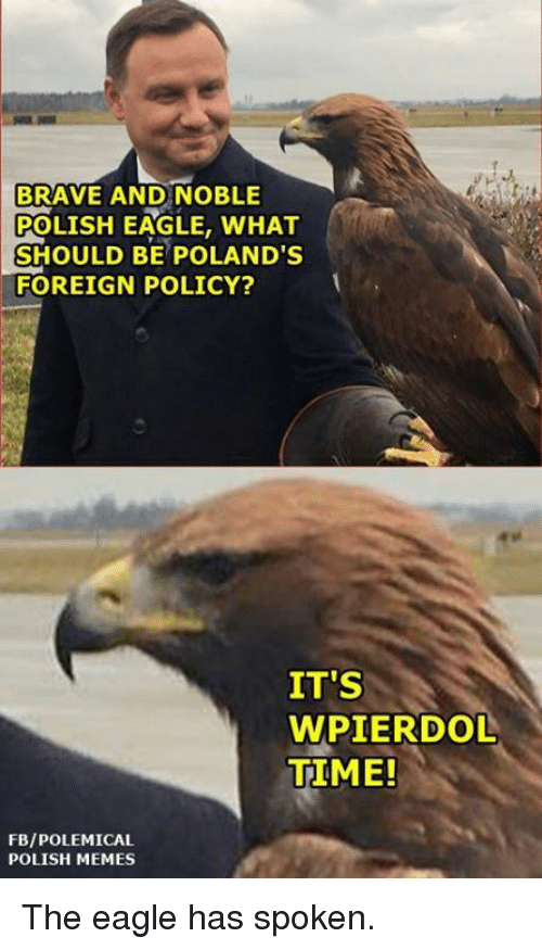 the eagle: BRAVE AND NOBLE  POLISH EAGLE, WHAT  SHOULD BE POLAND'S  FOREIGN POLICY?  IT'S  WPIERDOL  TIME!  FBIPOLEMICAL  POLISH MEMES The eagle has spoken.