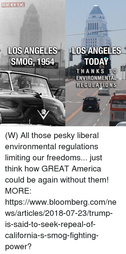 America, News, and Brave: BRAVE NEW FILMS  HI  IL  LOS ANGELES  SMOG,1954  LOS ANGELES  TODAY  THANKS T  ENVIRONMENTAL  REGULATIONS (W) All those pesky liberal environmental regulations limiting our freedoms... just think how GREAT America could be again without them! MORE: https://www.bloomberg.com/news/articles/2018-07-23/trump-is-said-to-seek-repeal-of-california-s-smog-fighting-power?