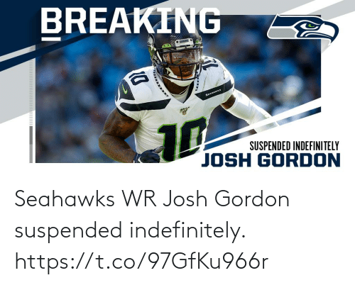 Seahawks: BREAKING  • SENES  SEAHAWKS  10  SUSPENDED INDEFINITELY  JOSH GORDON Seahawks WR Josh Gordon suspended indefinitely. https://t.co/97GfKu966r