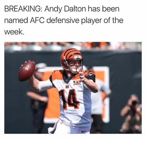 Andy Dalton: BREAKING: Andy Dalton has been  named AFC defensive player of the  week  14