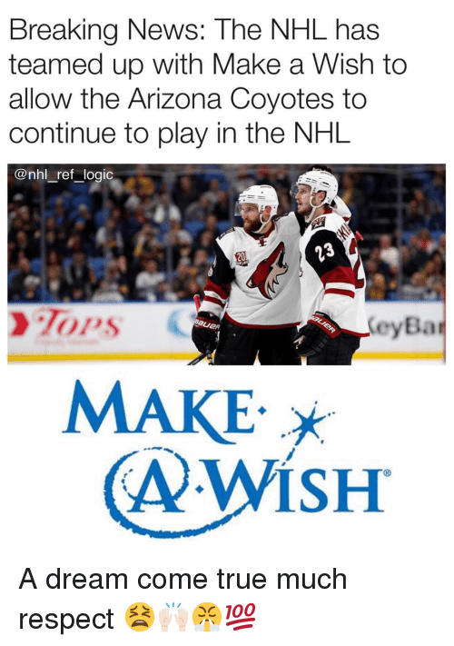 A Dream, Logic, and Memes: Breaking News: The NHL has  teamed up with Make a Wish to  allow the Arizona Coyotes to  continue to play in the NHL  @nhl ref _logic  20  eyBa  MAKE A dream come true much respect 😫🙌🏻😤💯