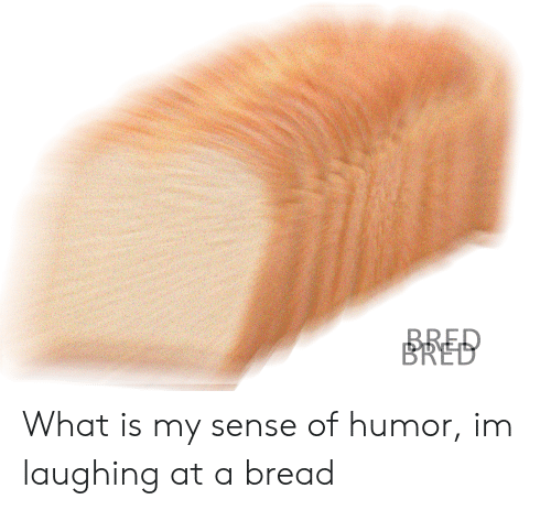 Reddit, What Is, and Bread: BRED What is my sense of humor, im laughing at a bread