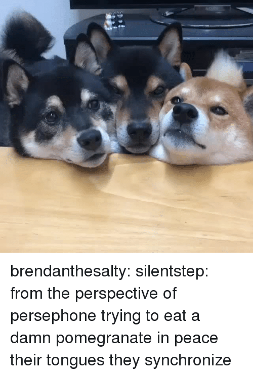 Target, Tumblr, and Blog: brendanthesalty: silentstep: from the perspective of persephone trying to eat a damn pomegranate in peace  their tongues they synchronize