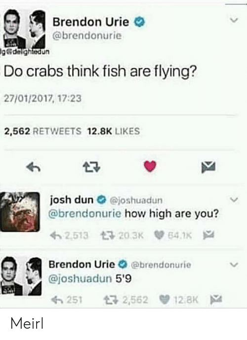 how high: Brendon Urie  @brendonurie  delightedun  Do crabs think fish are flying?  27/01/2017, 17:23  2,562 RETWEETS 12.8K LIKES  josh dun O ejoshuadun  @brendonurie how high are you?  Brendon Urie @brendonurie  @joshuadun 5'9  251 2,562 12.8K Meirl