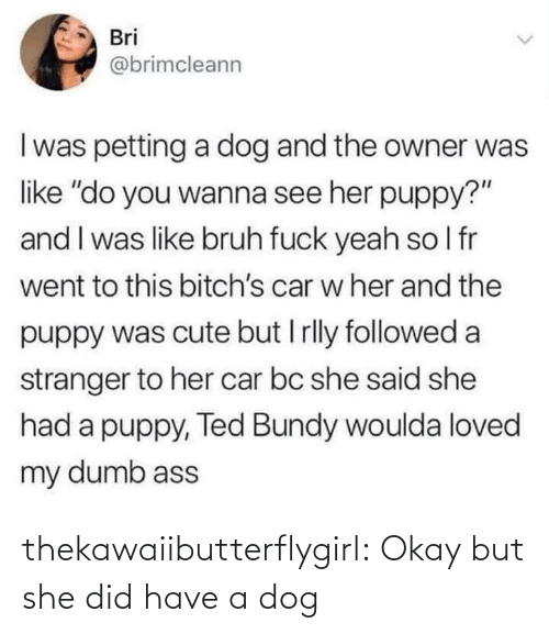 "stranger: Bri  @brimcleann  I was petting a dog and the owner was  like ""do you wanna see her puppy?""  and I was like bruh fuck yeah so I fr  went to this bitch's car w her and the  puppy was cute but I rlly followed a  stranger to her car bc she said she  had a puppy, Ted Bundy woulda loved  my dumb ass thekawaiibutterflygirl:  Okay but she did have a dog"
