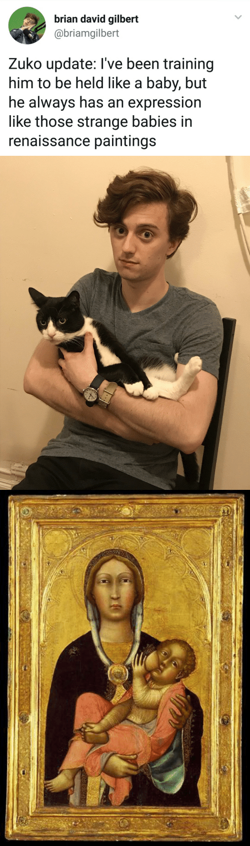 Paintings, Baby, and Been: brian david gilbert  @briamgilbert  Zuko update: I've been training  him to be held like a baby, but  he always has an expression  like those strange babies in  renaissance paintings