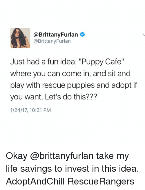 """Brittanie: @Brittany Furlan  @Brittany Furlan  Just had a fun idea: """"Puppy Cafe""""  where you can come in, and sit and  play with rescue puppies and adopt if  you want. Let's do this?  1/24/17, 10:31 PM Okay @brittanyfurlan take my life savings to invest in this idea. AdoptAndChill RescueRangers"""