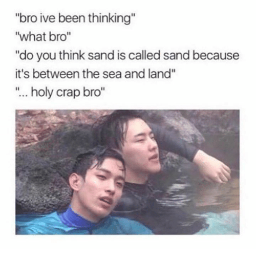 """craps: """"bro ive been thinking""""  """"what bro""""  """"do you think sand is called sand because  it's between the sea and land""""  """"... holy crap bro"""""""