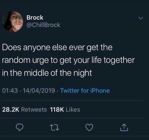 Dank, Iphone, and Life: Brock  @ChillBrock  Does anyone else ever get the  random urge to get your life together  in the middle of the night  01:43 14/04/2019 Twitter for iPhone  28.2K Retweets 118K Likes