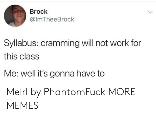 Syllabus: Brock  @ImTheeBrock  Syllabus: cramming will not work for  this class  Me: well it's gonna have to Meirl by PhantomFuck MORE MEMES