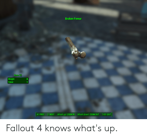 Fallout 4, Zoom, and Fallout: Broken Femu  Bone (2)  Weight  Value  W) PREV  S) NEXT  Wheel up) ZOOMIN  Wheel down) ZOOM OUT  TAB) EXIT Fallout 4 knows what's up.