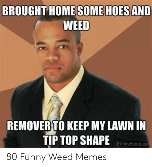 Hoes Be Like Memes: BROUGHT HOME SOME HOESAND  WEED  REMOVER TO KEEP MY LAWN IN  TIP TOP SHAPE  FunnyBeing.co 80 Funny Weed Memes