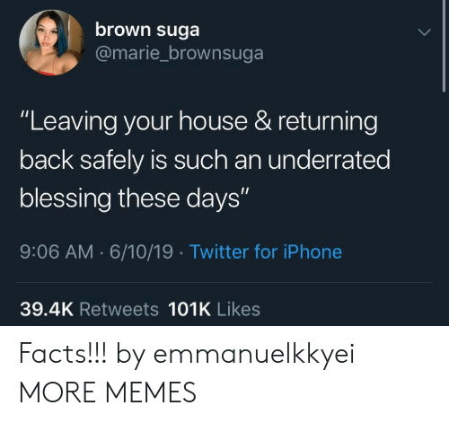 """underrated: brown suga  @marie_brownsuga  """"Leaving your house & returning  back safely is such an underrated  blessing these days""""  9:06 AM 6/10/19 Twitter for iPhone  39.4K Retweets 101K Likes Facts!!! by emmanuelkkyei MORE MEMES"""