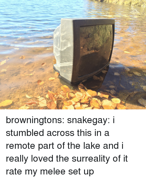Tumblr, Blog, and Http: browningtons: snakegay:   i stumbled across this in a remote part of the lake and i really loved the surreality of it   rate my melee set up