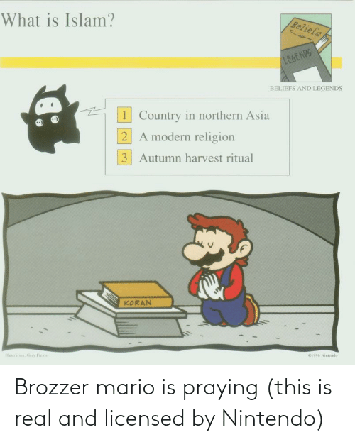Nintendo: Brozzer mario is praying (this is real and licensed by Nintendo)