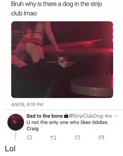 Bad, Bruh, and Club: Bruh why is there a dog in the strip  club Imao  4/9/18, 9:10 PM  Bad to the bone 6@StripClubDog 4m  U not the only one who likes tiddies  Craig Lol