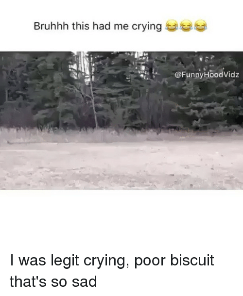 Crying, Sad, and Trendy: Bruhhh this had me crying to  @FunnyHoodVidz I was legit crying, poor biscuit that's so sad