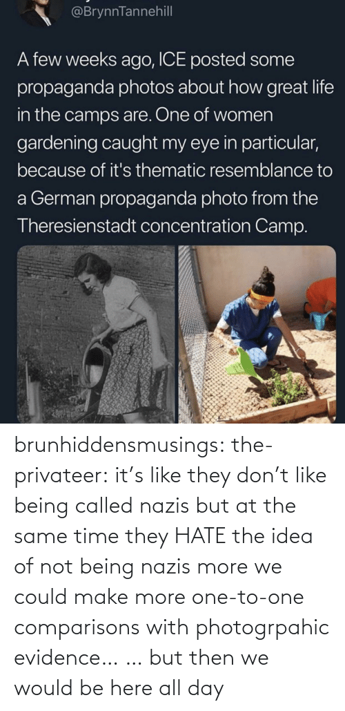 But Then: brunhiddensmusings:  the-privateer: it's like they don't like being called nazis but at the same time they HATE the idea of not being nazis more we could make more one-to-one comparisons with photogrpahic evidence… … but then we would be here all day