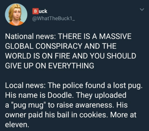 """Cookies, Fire, and News: Buck  @WhatTheBuck1_  National news: THERE IS A MASSIVE  GLOBAL CONSPIRACY AND THE  WORLD IS ON FIRE AND YOU SHOULD  GIVE UP ON EVERYTHING  Local news: The police found a lost pug.  His name is Doodle. They uploaded  a """"pug mug"""" to raise awareness. His  owner paid his bail in cookies. More at  eleven."""