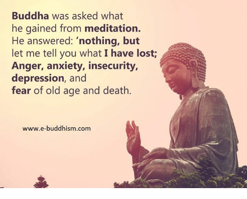 """Memes, Anxiety, and Buddha: Buddha was asked what  he gained from meditation.  He answered: """"nothing, but  let me tell you what I have lost  Anger, anxiety, insecurity,  depression, and  fear of old age and death.  www.e-buddhism.com"""