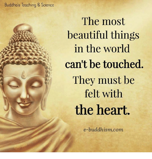 Buddhism: Buddha's Teoching & Science  The most  beautiful things  in the world  can't be touched  They must be  felt with  the heart  e-buddhism com