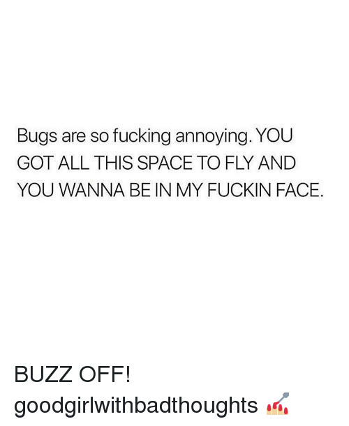 Fucking, Memes, and Space: Bugs are so fucking annoying. YOU  GOT ALL THIS SPACE TO FLY AND  YOU WANNA BE IN MY FUCKIN FACE. BUZZ OFF! goodgirlwithbadthoughts 💅🏼