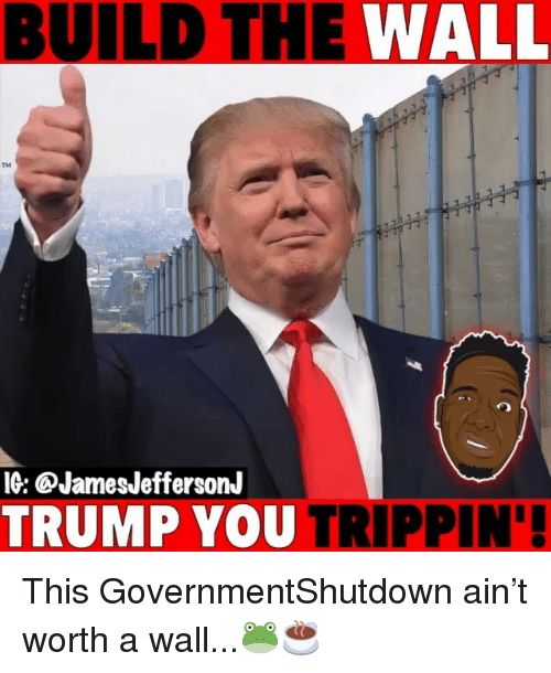 trippin: BUILD THE WALL  TM  IG: @JamesJeffersonJ  TRUMP YOU TRIPPIN' This GovernmentShutdown ain't worth a wall...🐸☕️