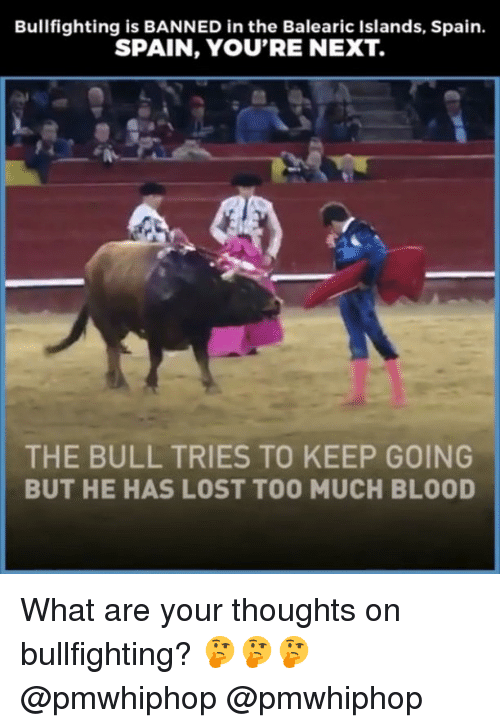 bulling: Bullfighting is BANNED in the Balearic Islands, Spain.  SPAIN, YOU'RE NEXT.  THE BULL TRIES TO KEEP GOING  BUT HE HAS LOST TOO MUCH BLOOD What are your thoughts on bullfighting? 🤔🤔🤔 @pmwhiphop @pmwhiphop