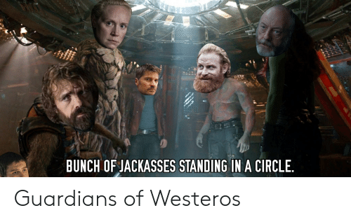 Westeros, Circle, and Guardians: BUNCH OF JACKASSES STANDING IN A CIRCLE. Guardians of Westeros
