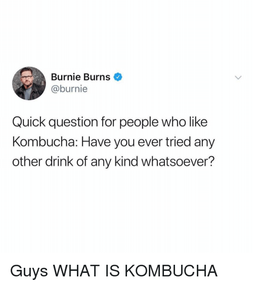 What Is, Girl Memes, and Burnie Burns: Burnie Burns  @burnie  Quick question for people who like  Kombucha: Have you ever tried any  other drink of any kind whatsoever? Guys WHAT IS KOMBUCHA