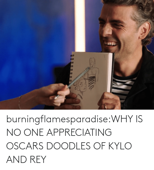 one: burningflamesparadise:WHY IS NO ONE APPRECIATING OSCARS DOODLES OF KYLO AND REY