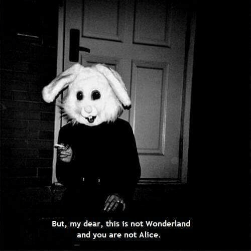 Alice, Wonderland, and You: But, my dear, this is not Wonderland  and you are not Alice.