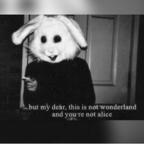 Alice, Wonderland, and Dear: but my dear, this is not wonderland  and you're not alice