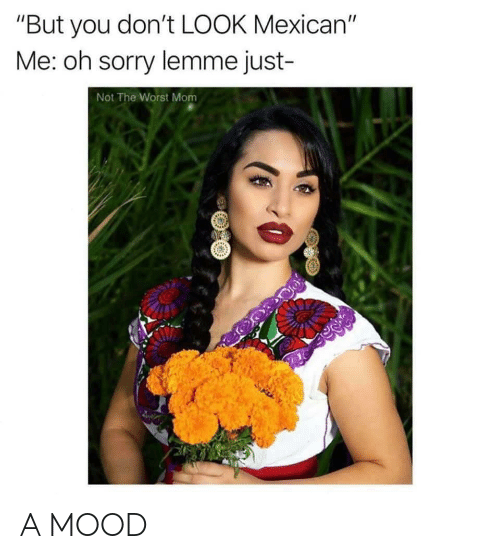"""Mood, Sorry, and The Worst: """"But you don't LOOK Mexican""""  Me: oh sorry lemme just-  Not The Worst Mom A MOOD"""