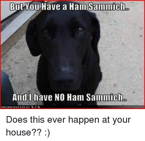 sammich: But You  Have a Han Sammicho  And I have NO Ham Sammich, Does this ever happen at your house?? :)