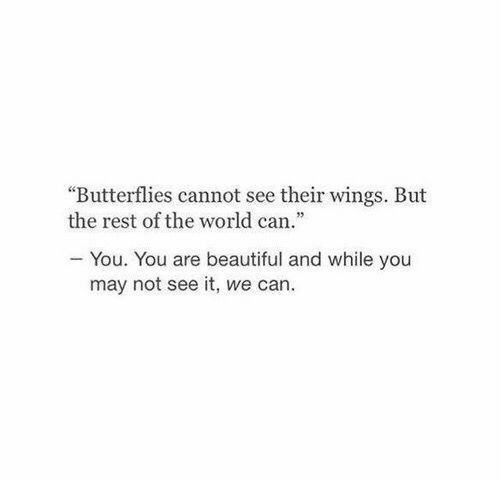 """Wings: """"Butterflies cannot see their wings. But  the rest of the world can.""""  You. You are beautiful and while you  may not see it, we can."""
