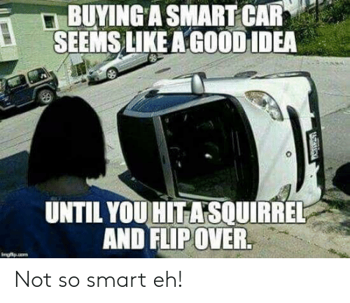 Good, Idea, and Car: BUYING A SMART CAR  SEEMS LIKE A GOOD IDEA  UNTIL YOU HITASOUIRREL  AND FLIP OVER.  Imgfp.o  ATARGY Not so smart eh!