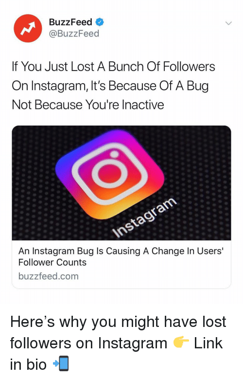 follower: BuzzFeed <  @BuzzFeed  If You Just Lost A Bunch Of Followers  On Instagram, It's Because Of A Bug  Not Because You're Inactive  An Instagram Bug ls Causing A Change In Users  Follower Counts  buzzfeed.com Here's why you might have lost followers on Instagram 👉 Link in bio 📲