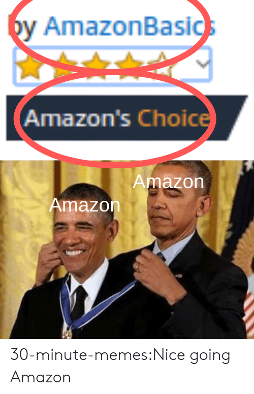 Amazon, Memes, and Target: by AmazonBasics  Amazon's Choice  Amazon  Amazon 30-minute-memes:Nice going Amazon