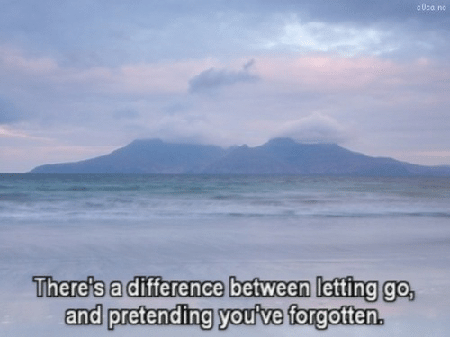 No,  Pretending, and And: c 0cai no  There's a difference between letting go,  and pretending youive forgottern