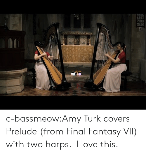Love, Tumblr, and Blog: c-bassmeow:Amy Turk covers Prelude (from Final Fantasy VII) with two harps.  I love this.