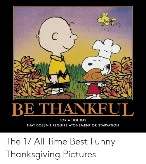 Funny, Thanksgiving, and Best: C  BE THANKFUL  FOR A HOLIDAY  THAT DOESN'T REQUIRE ATONEMENT OR STARVATION The 17 All Time Best Funny Thanksgiving Pictures