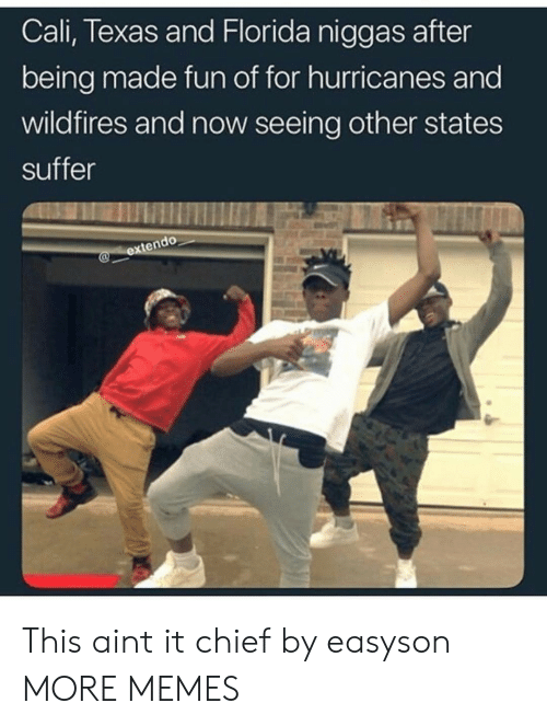 Dank, Memes, and Target: Cali, Texas and Florida niggas after  being made fun of for hurricanes and  wildfires and now seeing other states  suffer This aint it chief by easyson MORE MEMES