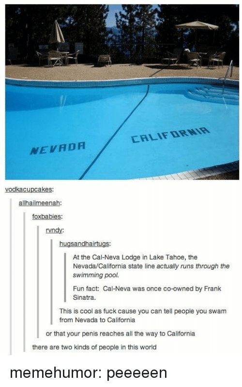 Tumblr, Blog, and California: CALIFDRNIR  NEVADA  alhailmeenah  foxbabies  rvndy:  At the Cal-Neva Lodge in Lake Tahoe, the  Nevada/California state line actually runs through the  swimming pool.  Fun fact: Cal-Neva was once co-owned by Frank  Sinatra  This is cool as fuck cause you can tell people you swam  from Nevada to California  or that your penis reaches all the way to California  there are two kinds of people in this world memehumor:  peeeeen